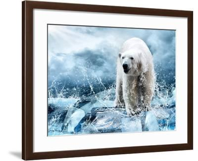 White Polar Bear Hunter On The Ice In Water Drops-yuran-78-Framed Photographic Print