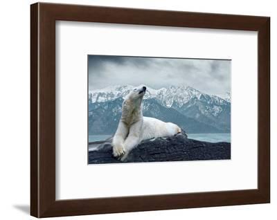 White Polar Bear on the Ice-yuran-78-Framed Photographic Print