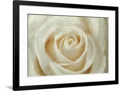 White Rose-Cora Niele-Framed Giclee Print
