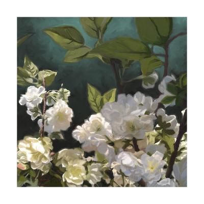 White Roses I-Rick Novak-Art Print
