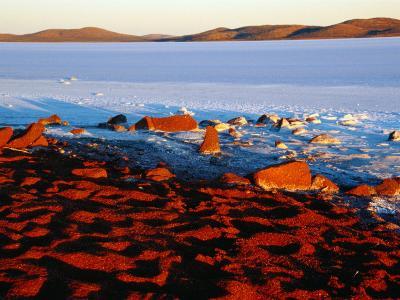 White Saltpan and Red Dunes, Lake Gairdner, Australia-Diana Mayfield-Photographic Print
