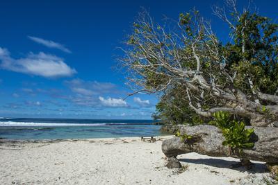 https://imgc.artprintimages.com/img/print/white-sand-beach-on-the-north-coast-of-efate-vanuatu-pacific_u-l-q1bsmk30.jpg?p=0