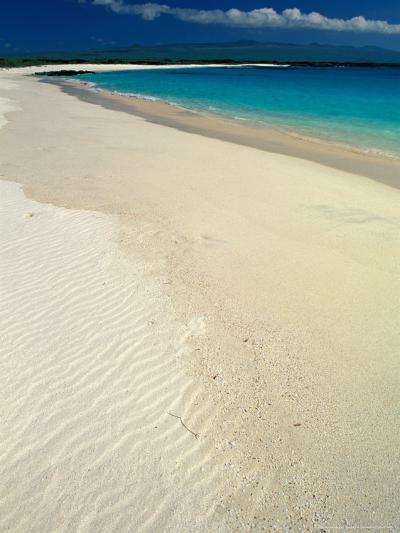 White Sand Beach, San Cristobal Island, Galapagos Islands, Ecuador-Jack Stein Grove-Photographic Print
