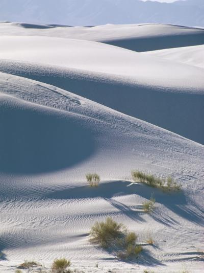 White Sands Desert, New Mexico, USA-Adam Woolfitt-Photographic Print