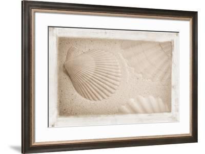 White Shells and Sand-Cora Niele-Framed Giclee Print