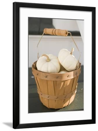 White Squashes in Woodchip Basket-Foodcollection-Framed Photographic Print