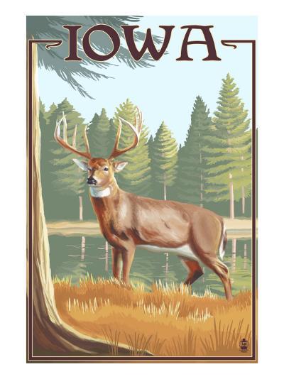 White Tailed Deer - Iowa-Lantern Press-Art Print