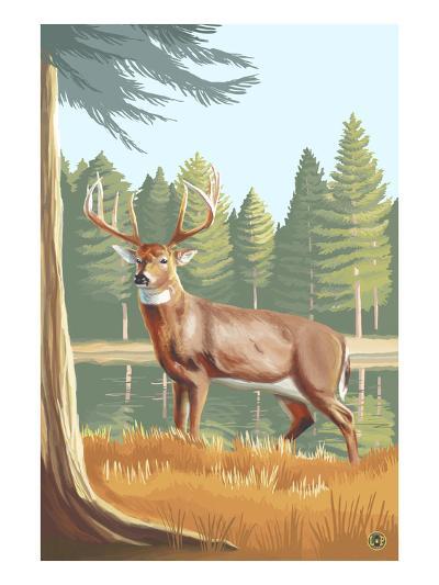 White Tailed Deer-Lantern Press-Art Print