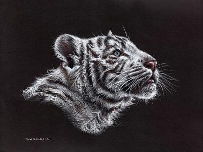 White Tiger Pastel-Sarah Stribbling-Art Print