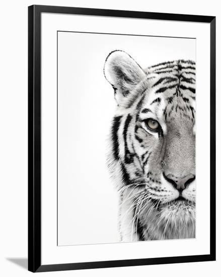 White Tiger- Design Fabrikken-Framed Photographic Print