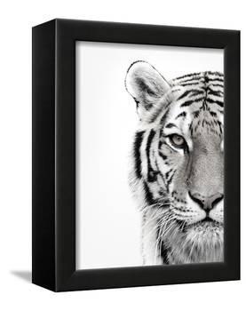 White Tiger-Design Fabrikken-Framed Premier Image Canvas