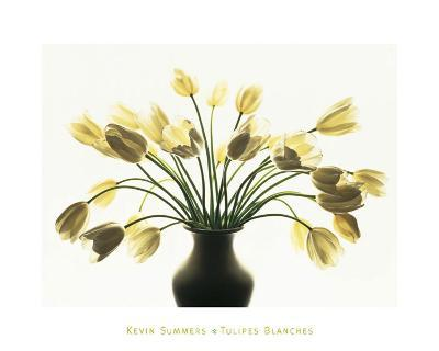 White Tulips-Kevin Summers-Art Print