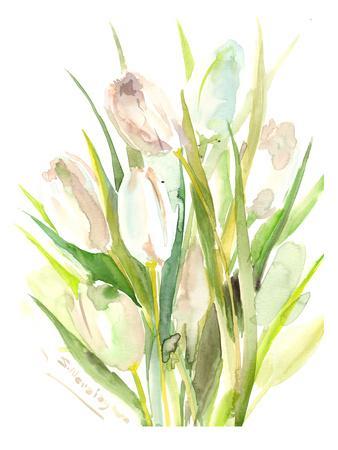 https://imgc.artprintimages.com/img/print/white-tulips_u-l-f81pwn0.jpg?p=0
