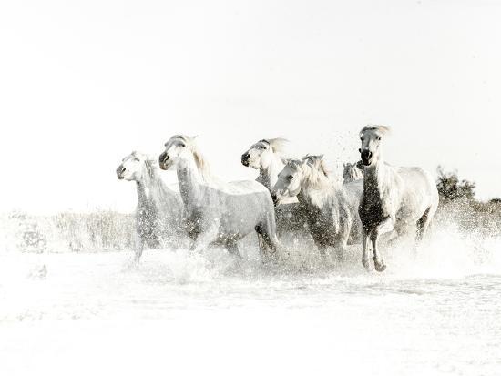White Water-Valda Bailey-Photographic Print
