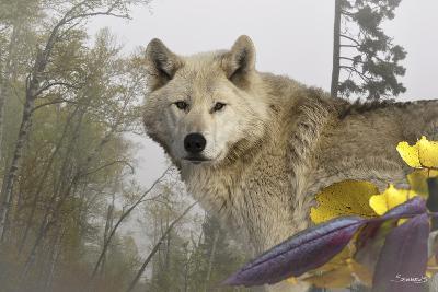 White Wolf-Gordon Semmens-Photographic Print