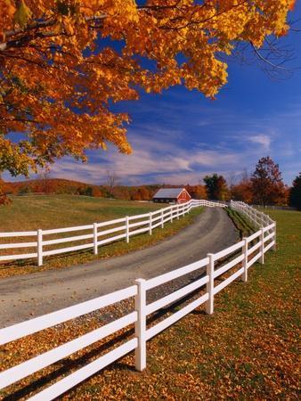 https://imgc.artprintimages.com/img/print/white-wooden-fence-along-farm_u-l-pzlzzz0.jpg?p=0