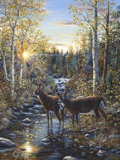 Whitetail Deer-Jeff Tift-Giclee Print