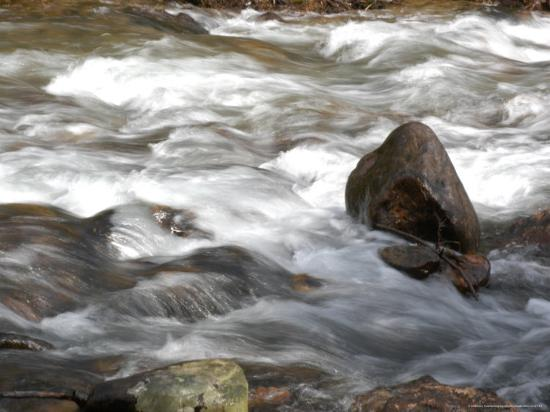 Whitewater Rushes Over Rocks in a River in Montana-Stacy Gold-Photographic Print