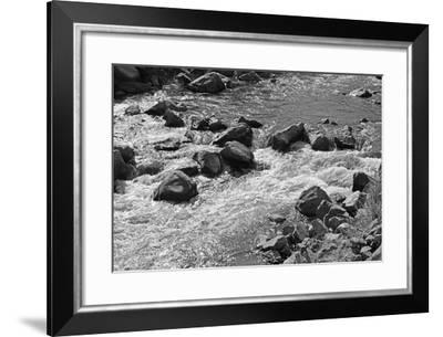 Whitewater-Bike Tourist-Framed Photographic Print