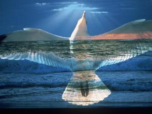 Bird Superimposed Over Ocean by Whitney & Irma Sevin