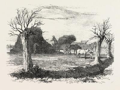 https://imgc.artprintimages.com/img/print/whittlesea-mere-carting-peat-from-the-stack-uk-1851_u-l-pvt0tq0.jpg?p=0