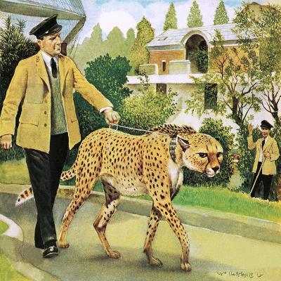 Who's Who at the Zoo: Rabiu, the Dog-Like Cat-G^ W Backhouse-Giclee Print