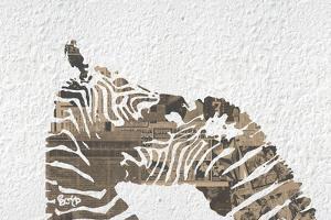 Zebras on White by Whoartnow