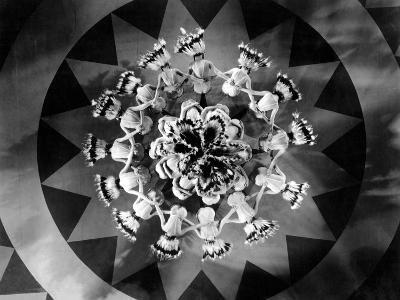 Whoopee!, 1930--Photo