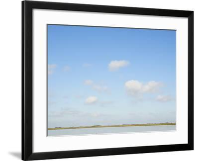 Whooping Crane Wintering Grounds-Klaus Nigge-Framed Photographic Print