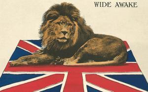Wide Awake British Lion on Union Jack
