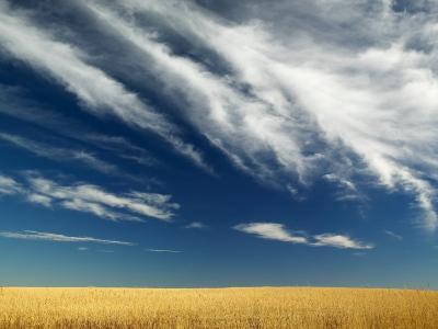 Wide Open Dramatic Prairie-Pete Ryan-Photographic Print