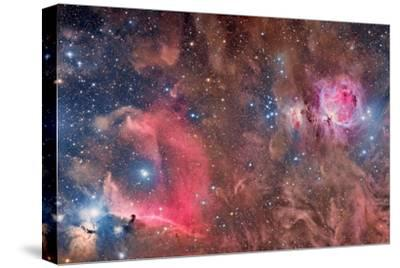 Widefield View of Orion Nebula and Horsehead Nebula
