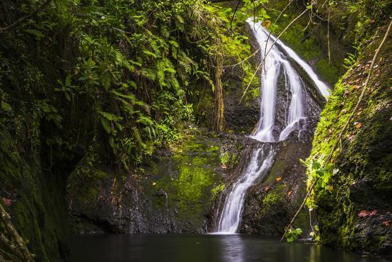 Wigmore's Waterfall, Rarotonga, Cook Islands, South Pacific, Pacific-Matthew Williams-Ellis-Photographic Print
