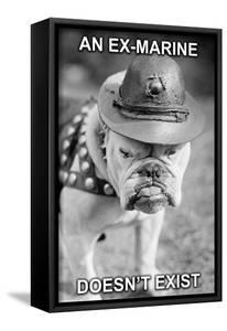 An Ex-Marine by Wilbur Pierce
