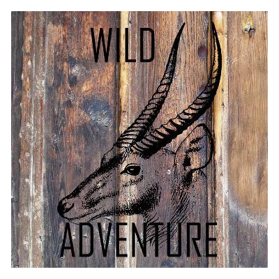 Wild Adventure-Sheldon Lewis-Art Print