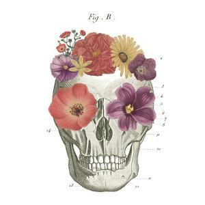 Floral Skull II by Wild Apple