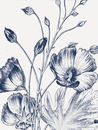 Botanical Beauty Chalk IX Blue on White Crop by Wild Apple Portfolio