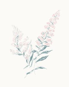 Flowers on White I Contemporary by Wild Apple Portfolio