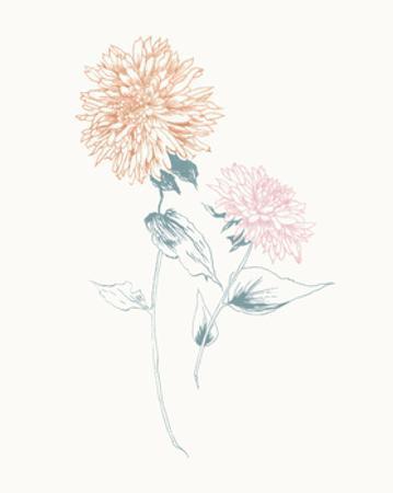 Flowers on White IV Contemporary by Wild Apple Portfolio