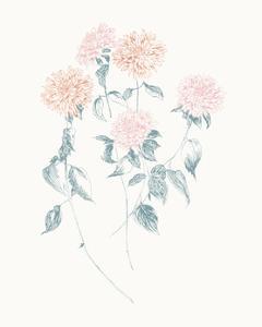 Flowers on White VI Contemporary by Wild Apple Portfolio
