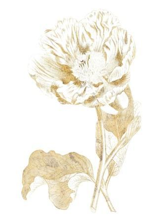 Gilded Botanical VII by Wild Apple Portfolio