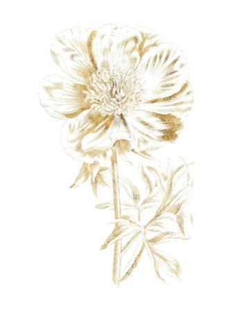 Gilded Botanical VIII by Wild Apple Portfolio