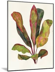 Harriets Elements 11 by Wild Apple Portfolio