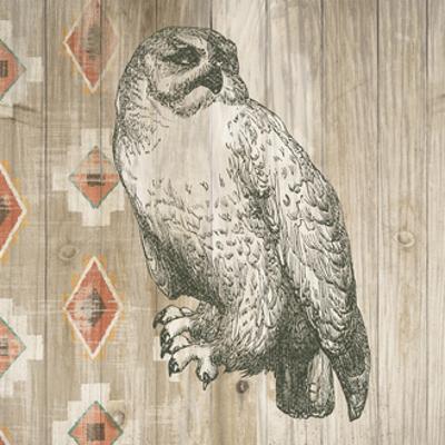 Natural History Lodge southwest II by Wild Apple Portfolio