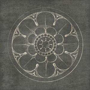 Rosette III Gray by Wild Apple Portfolio
