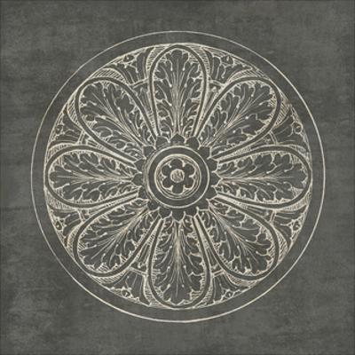 Rosette VIII Gray by Wild Apple Portfolio