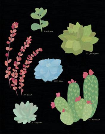 Succulent Chart IV by Wild Apple Portfolio