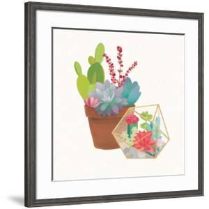 Succulent Garden II by Wild Apple Portfolio