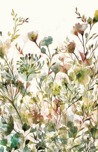 Transparent Garden Warm by Wild Apple Portfolio