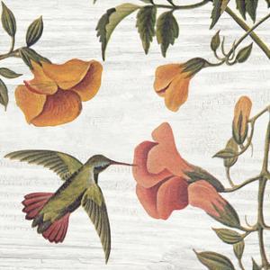 Vintage Hummingbird II by Wild Apple Portfolio